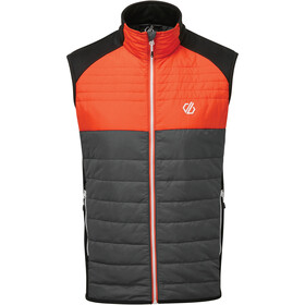 Dare 2b Coordinate Wollen Vest Heren, trail blaze/black/ebony grey